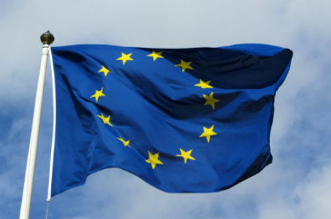 EU delegation to assess election recommendations