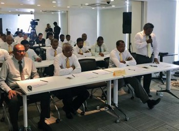 Shifting alliances: MDP votes to team up with Jameel