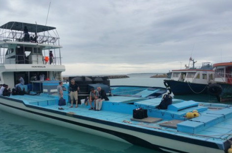 Maldives army stops tourists out 'whale-watching'