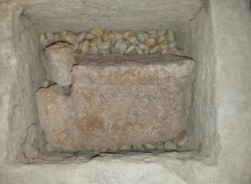 Ninth century relics discovered in Hanyaameedhoo