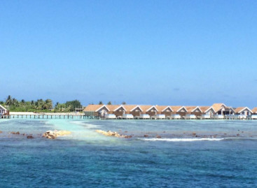 "Reef frequented by whale sharks ""destroyed"" by resort's excavation work"