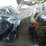 Police seize 2kg of drugs from state-owned cargo boat