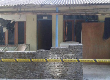 Four-year-old girl stabbed to death on northern island