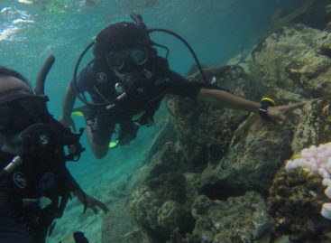 Can Maldives reefs recover from El Nino?