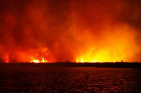 Arson suspected as fires destroy wetlands in Fuvahmulah