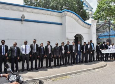 Suspension lifted for sixteen more lawyers
