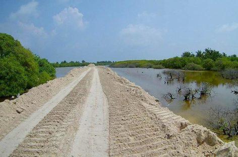 NGOs slam 'careless sacrifice' of Kulhudhuffushi mangroves