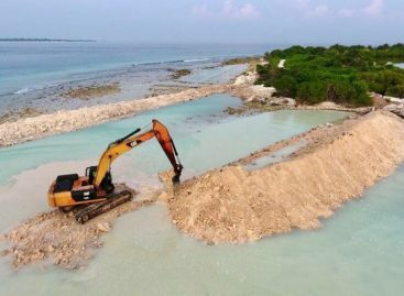 NGO sues government over mangrove destruction