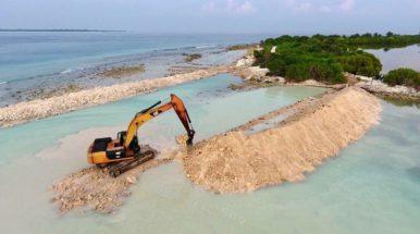 NGO sues government over mangrove destruction