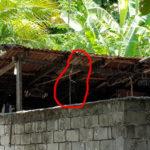 Police probe suspicious Nolhivaram suicide