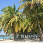 Tourism bodies beg for Maldives state of emergency to stop