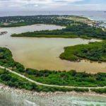 Authorities urged to protect Kulhudhuffushi mangrove