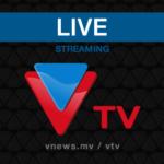 VTV fined US$26k for speech defaming president
