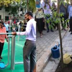 City council begins planting trees in Malé