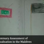 Maldives bans NGO over 'anti-Islamic' report
